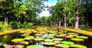 Kopshti Botanik Kombetar i Mauritius