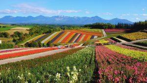 Pushime ne Hokkaido