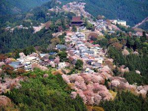 Pushime ne Nara